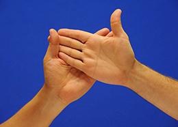 Cómo coger las manos en el dactilológico en palma